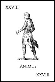 28Animus